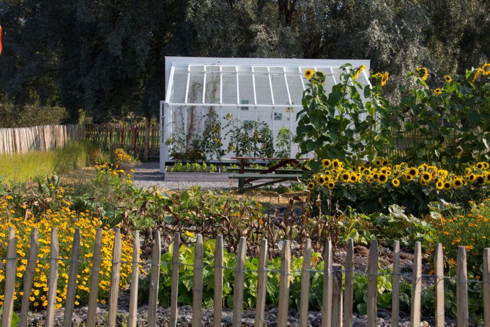 Vaxthus pa rosendalstradgard