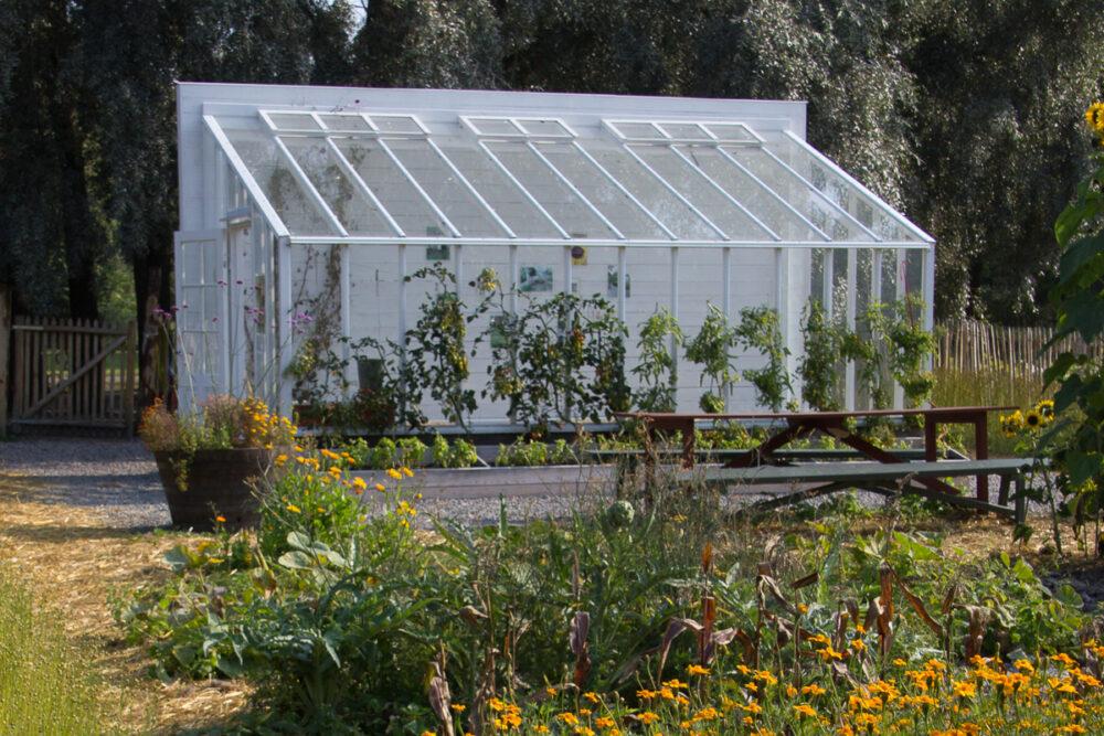 Vaxthus utan bygglov