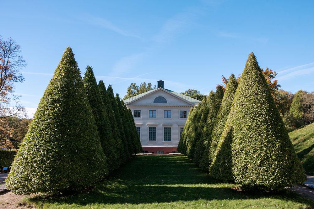 Välklippta träd framför vit slottsbyggnad