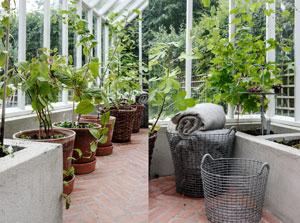 Ett städat och fint växthus med krukor på rad och filtar i metallkorgar