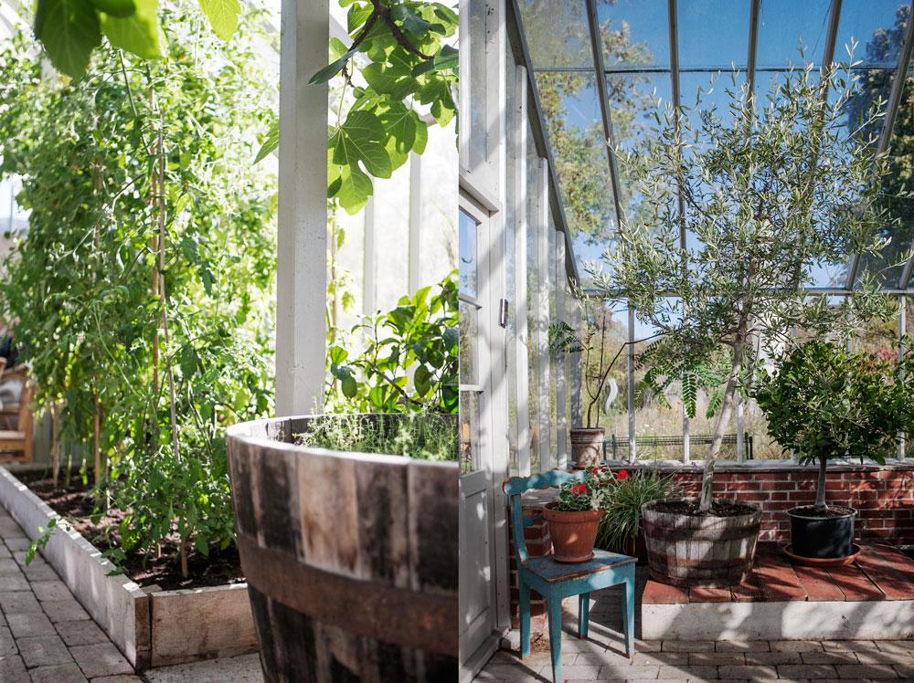 Interiör från växthuset på Nynäs slott som har enkla bäddar i trä