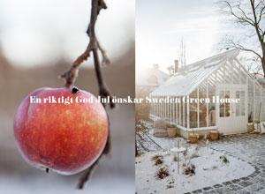 Juläpple och växthus i vinterljus med God Jul hälsning
