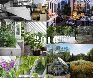 kollage av bilder från förra årets Dagboksanteckningar