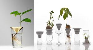 Insatser till glas för att följa odling på nära håll , en i porslin och en i mässing