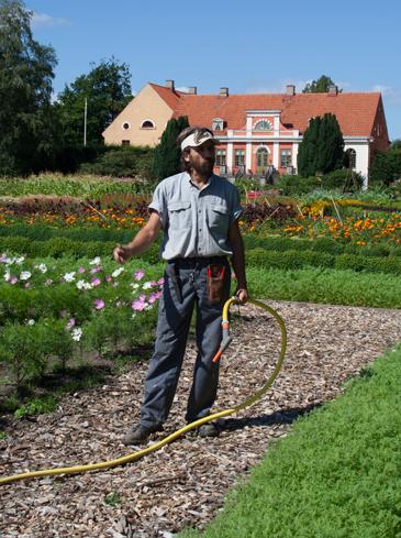 En man stor i en trädgård med vattenslang