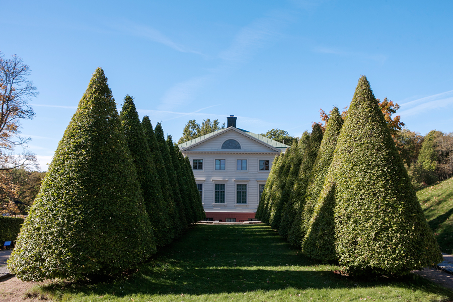 Slottsbyggnad bakom idegransallé.