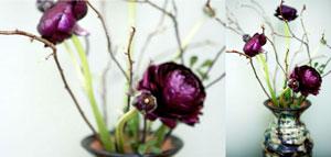 Keramikvas fyndad på loppmarknad fylld med mörkröda ranunkler och kvistar av svart vinbär klippta ifrån trädgården