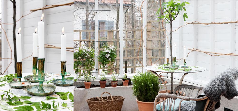 En dubbel bild med ett mysigt inrett hörn av växthuset där ett fikonträd samsas med en rosmarin och en skön fåtölj. Den andra bilden är en närbild på lde tända ljusen som står på bordet.