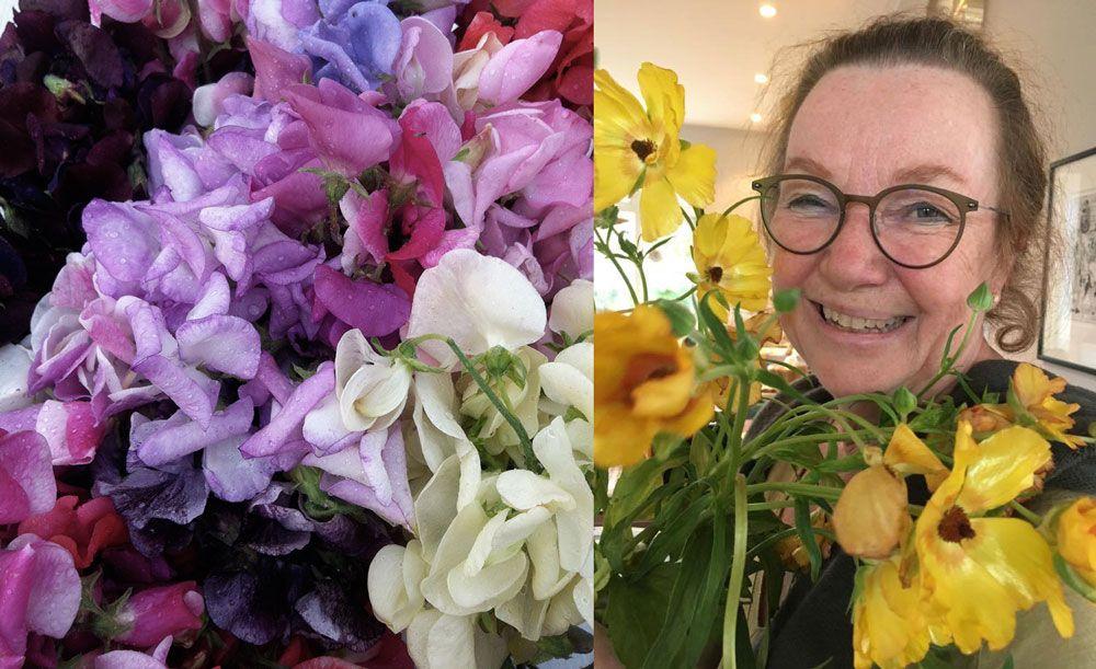 Cecilia Wingård som odlar luktärter i skånska Rugerup