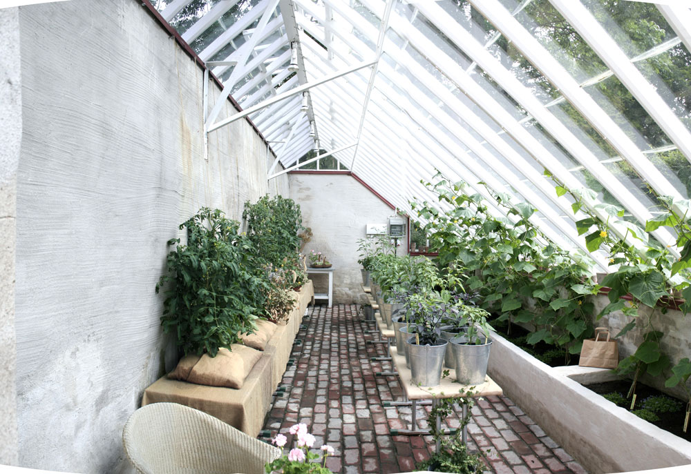 Interiören på det växthus som vi byggt på Katerinetorp i malmo. Tegelgolv och upphöjda gjutna gjordbäddar i beton samt en bänk i trä ger en naturlig känsla.