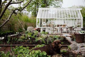 Yta med rabatter och grus framför Sweden Green House's växthus som kan ge idéer hur du själv kan utforma ytan runt ett växthus
