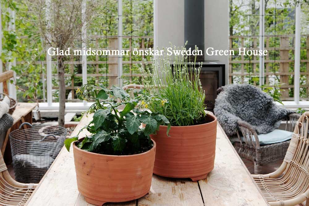 Sweden Green House önskar alla en glad midsommar med en interiörbild från växthuset med den nya krukan på bordet.