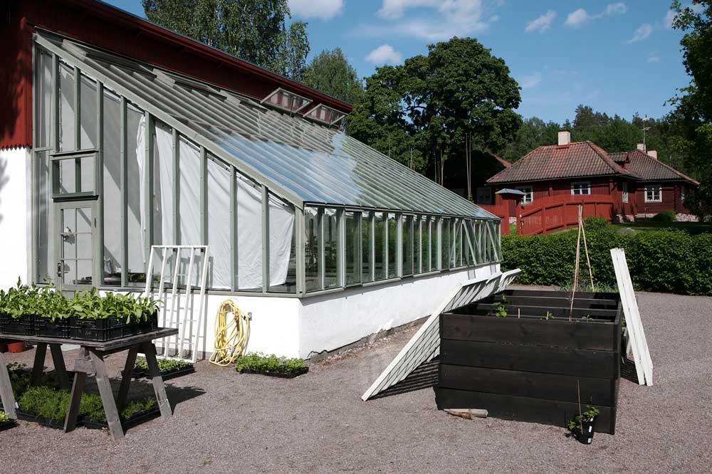 Vårt växthus med pulpettak på Stabergs bergmansgård strax utanför Falun