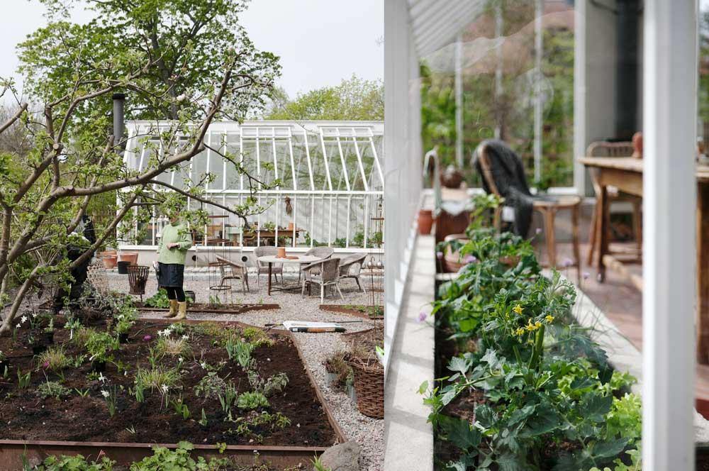 Vitt är en klassisk växthsfärg oc och även den kulör som vi vilt till visningsväxthuset i Nacka.