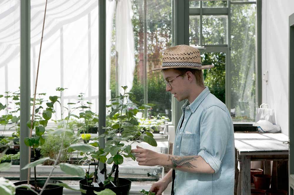 I växthuset på Stabergs bergmansgård odlas det flitigt och för att man ska kunna börja så tidigt som möjligt på våren är det försett med isolerglas. invändigt finns en vägg så att man kan hålla olika temperaturer i de olika rummen.