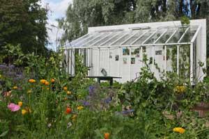 Området utanför växthuset på Rosendals trädgård är fyllt med ätabara blommor