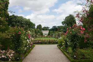 Parc de Bagatelle sett från rdet rosarium med 1200 sorters rosor som finns i parken.