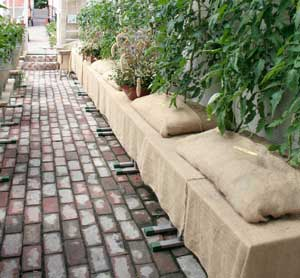 Marktegel modell större är ett vackert och praktiskt alternativ som golv till växthuset.