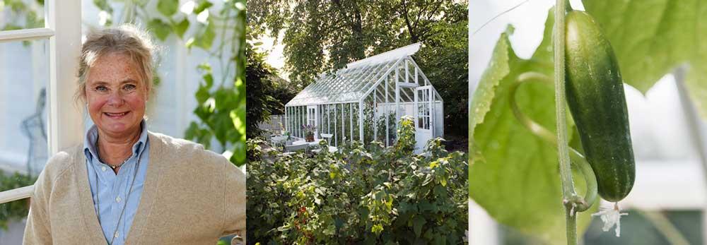 Eva Halfwordson från Sweden Green House berättar om hur hennes passion blev ett växthusföretag.