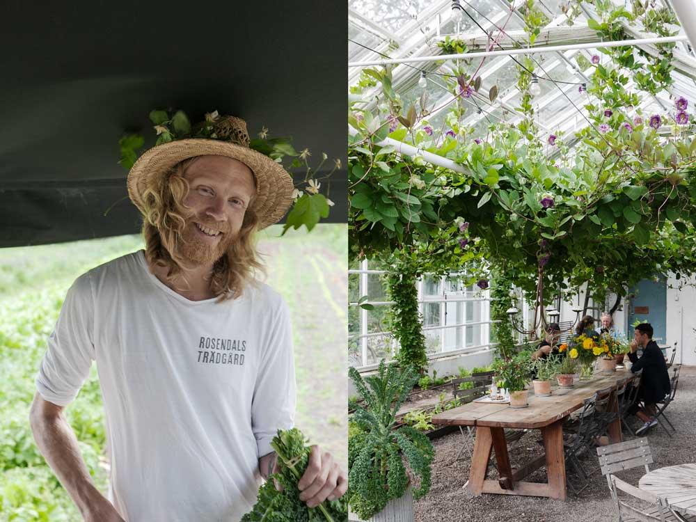Förra årets skördefest på Rosendal var en trevlig tillställning. Nu är det dags igen. Här är en bild på en av de anställda och ett inifrån trädgårdens växthus.