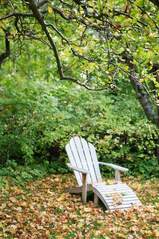 En solstol i trädgården på hösten