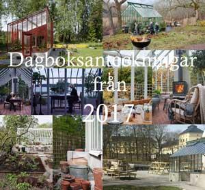 dagboksanteckningar från vaxthusaret 2017.