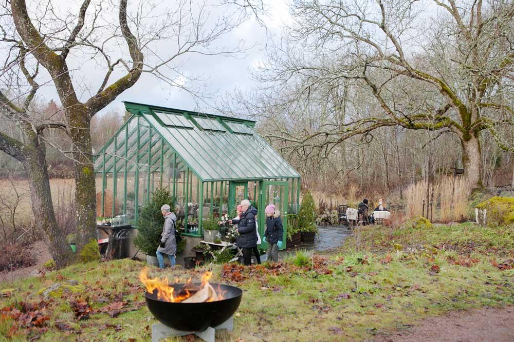 Familjen Grön ordnar öppet hus med försäljning regelbundet och det använder det gröna växthuset som vi byggt som lokal.