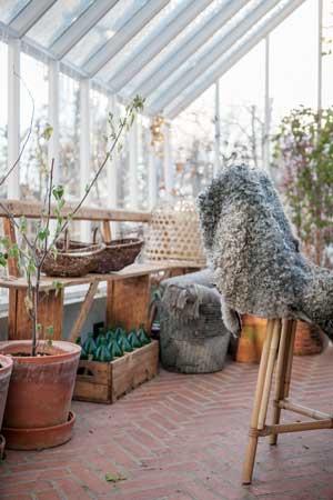 Ett fårskinn ligger slängd över en rottingstol i växthuset.