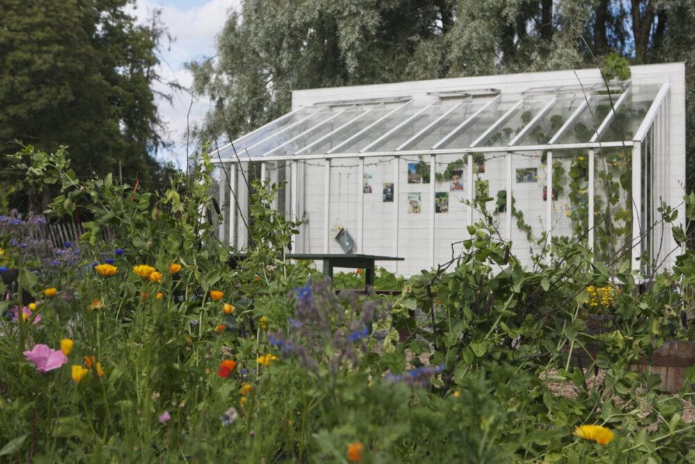 Ett av våra växthus på rosendals trädgård.