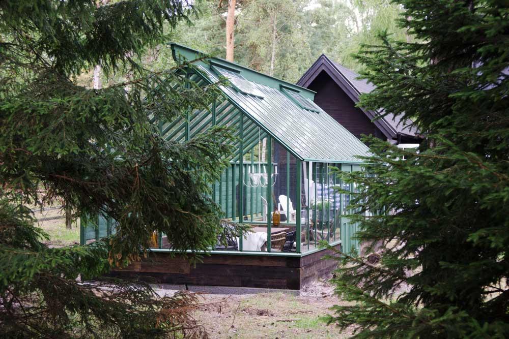 Ett grönt växthus som ligger i en tallskog och som därför vilar på en mur av tjärat timmer.