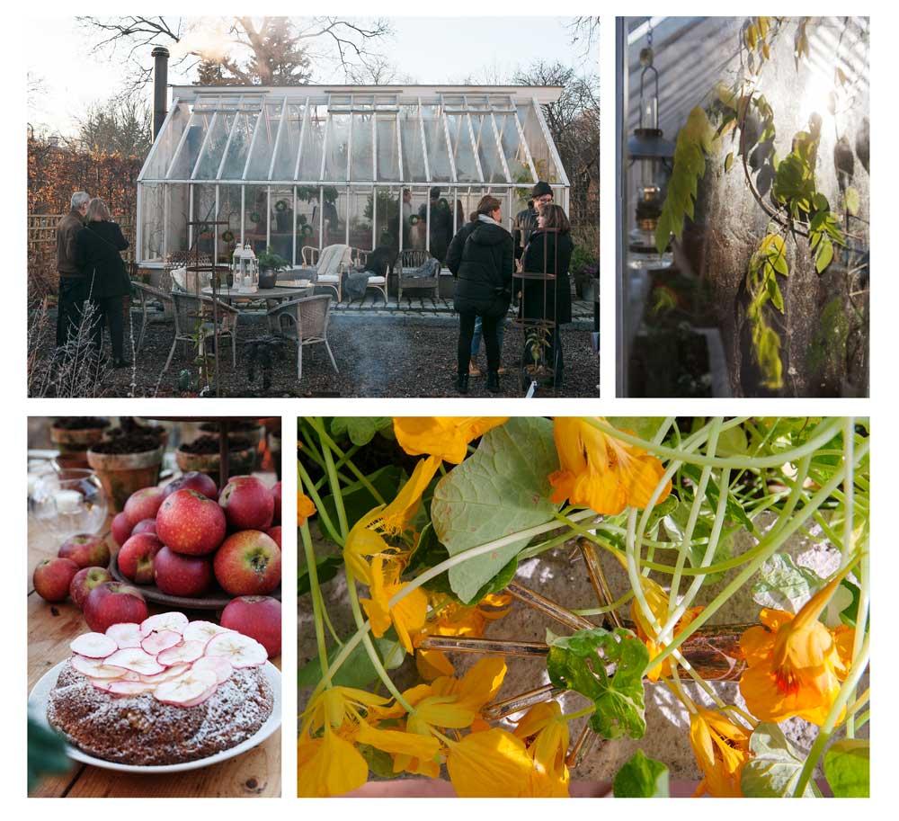 Bildsvep från öppet växthus i Nacka förra året.