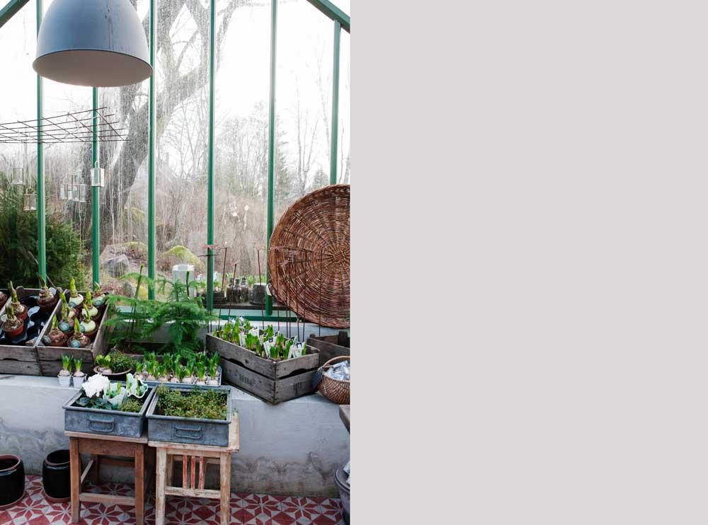 Familjen Grön som ibland förvandlar sitt växthus till butik har en bred mur i sitt växthus.