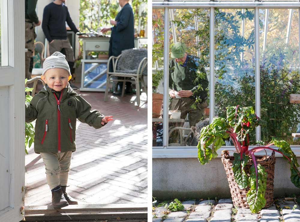 en väldigt besökare i växthuset och Bengt som häller upp en kopp kaffe.