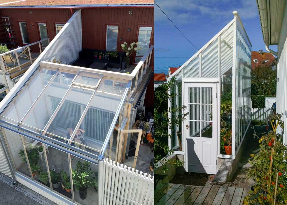 Växthus i radhuslänga och fristående växthus med pulpettak.