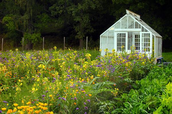 växthus på Rosendals Trädgårdar