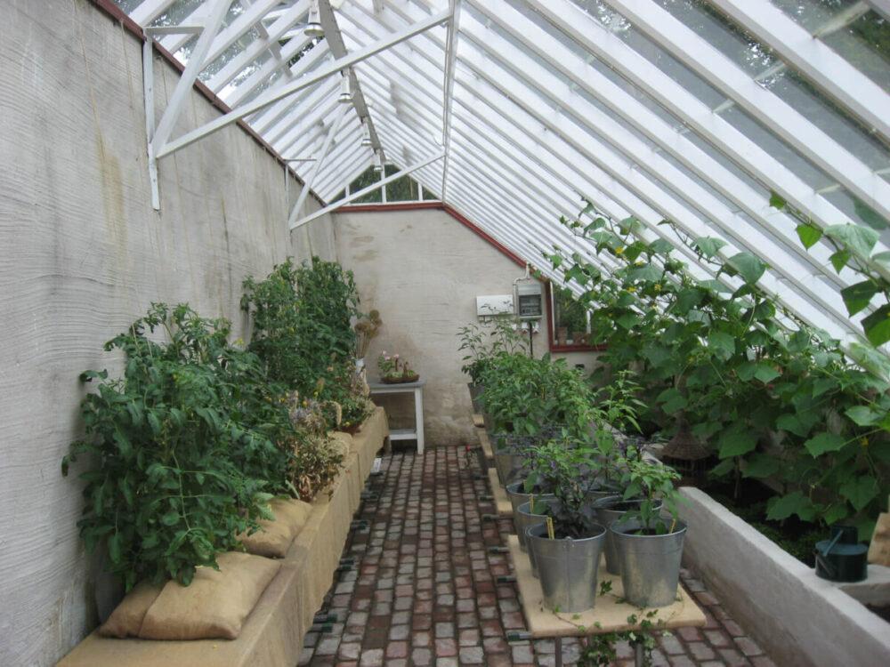 Arkitektritat orangeri med asymmetrisk tak