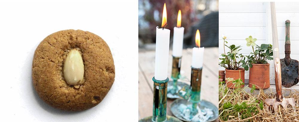 En trio med saker som förgyller advent i växthuset, pepparnötter, stearinljus och julrosor.