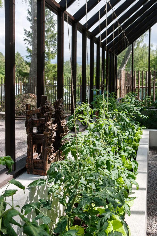 odlingsbädd i brunt växthus