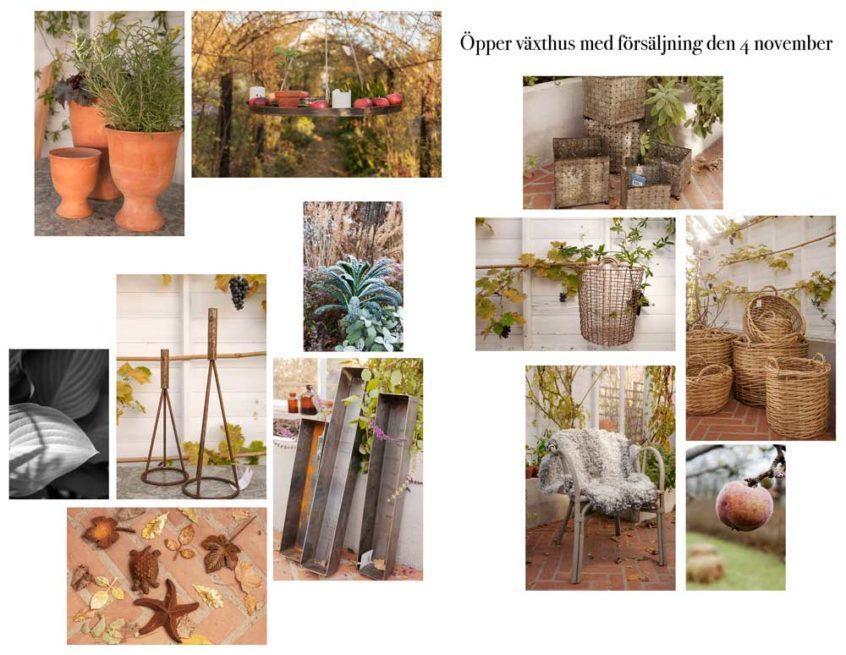 Ett kollage med produkter som vi säljer under växthusminglet på söndag.