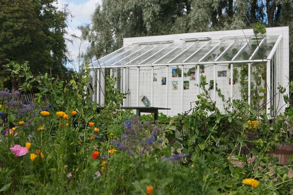 Växthus mot en vit timmervägg