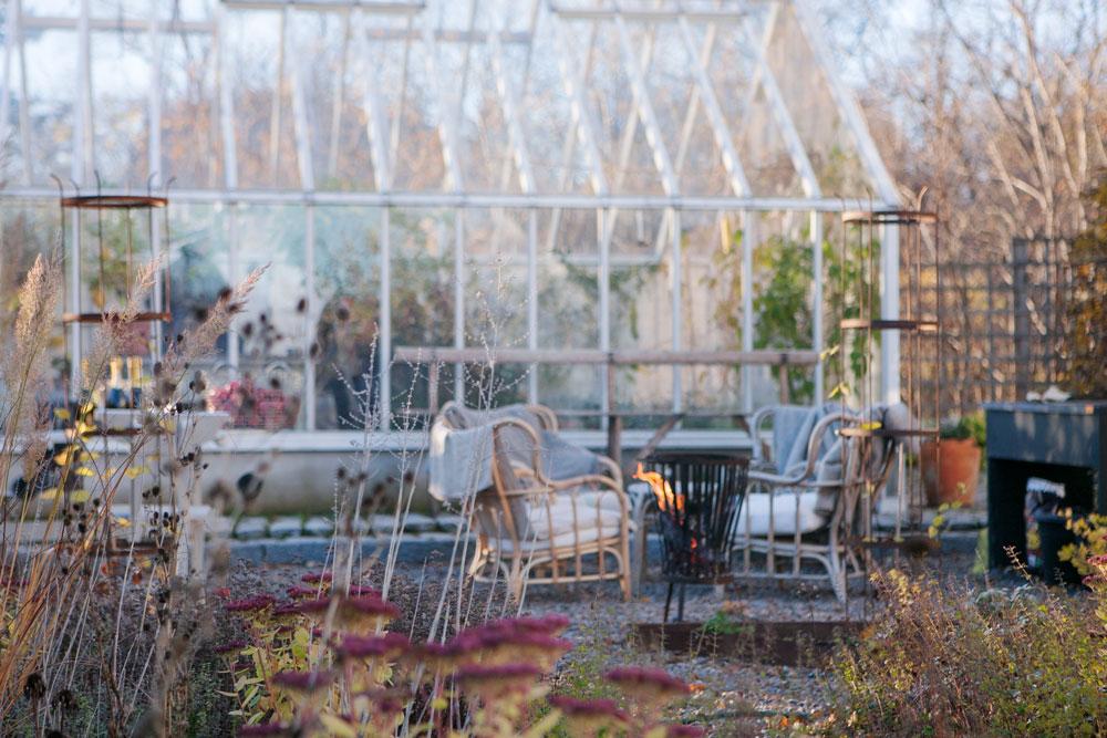 ett växthus med sadeltak i novemberljus.