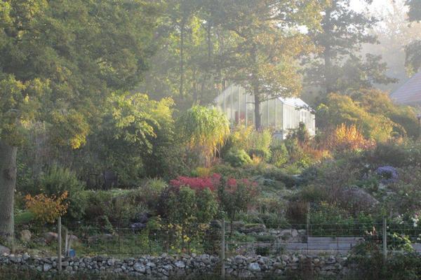 växthus i en trädgård