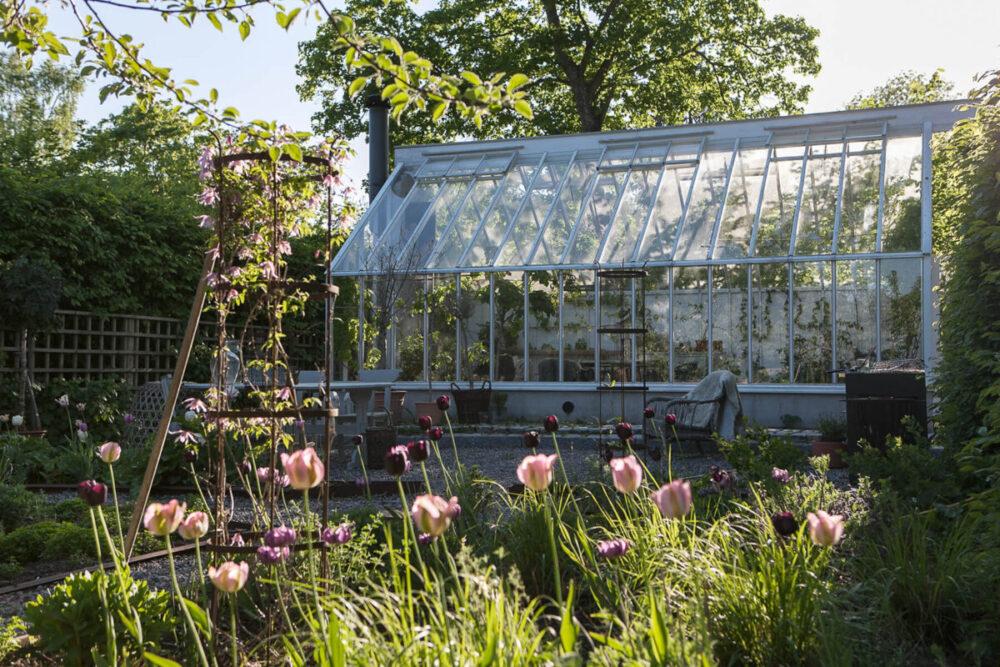 Växthus med sadeltak i en trädgård