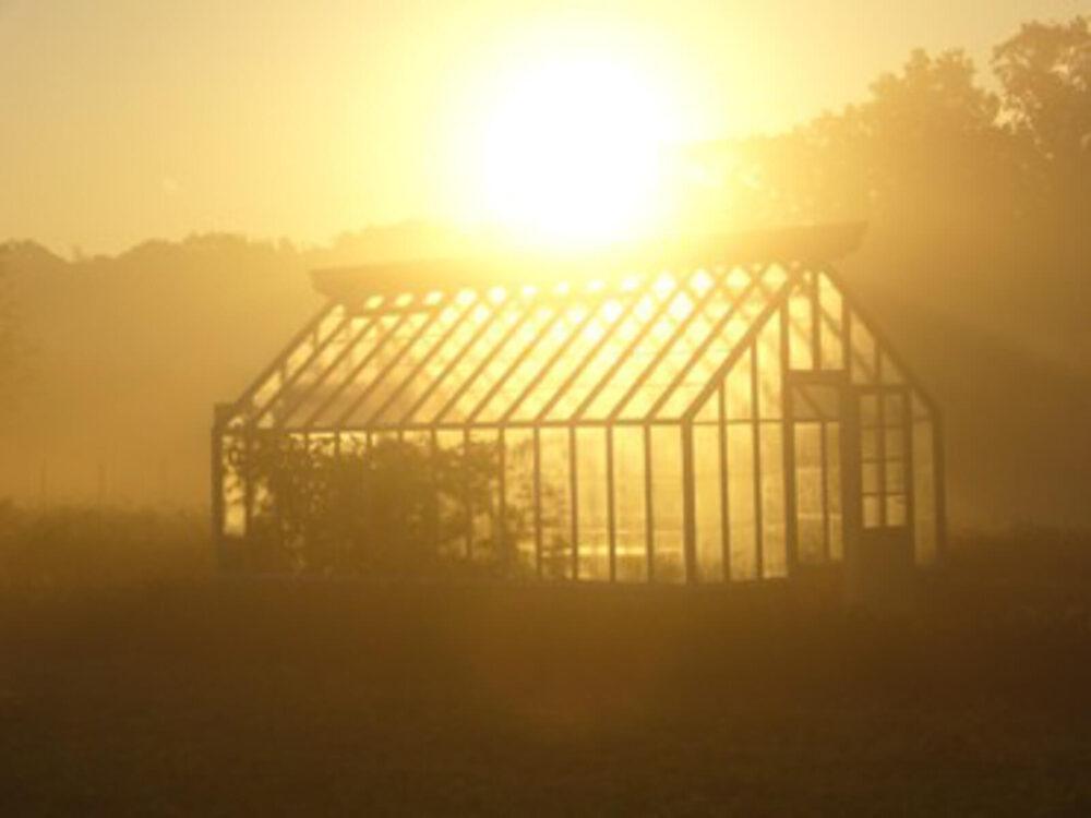 Växthus med sadeltak i motljus.