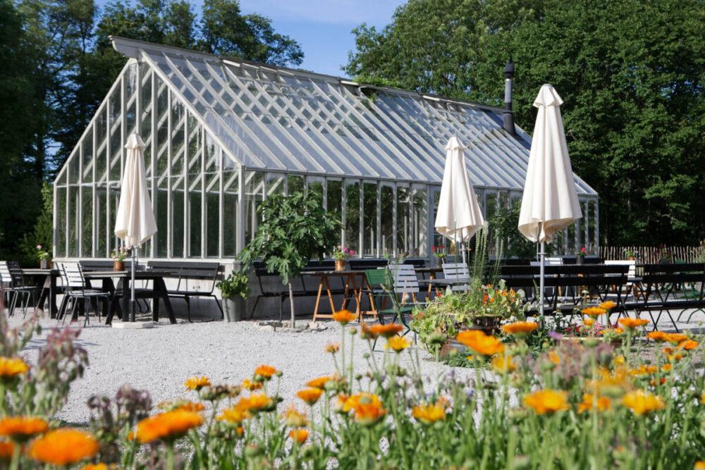 Växthuset på leva kungslador i visby
