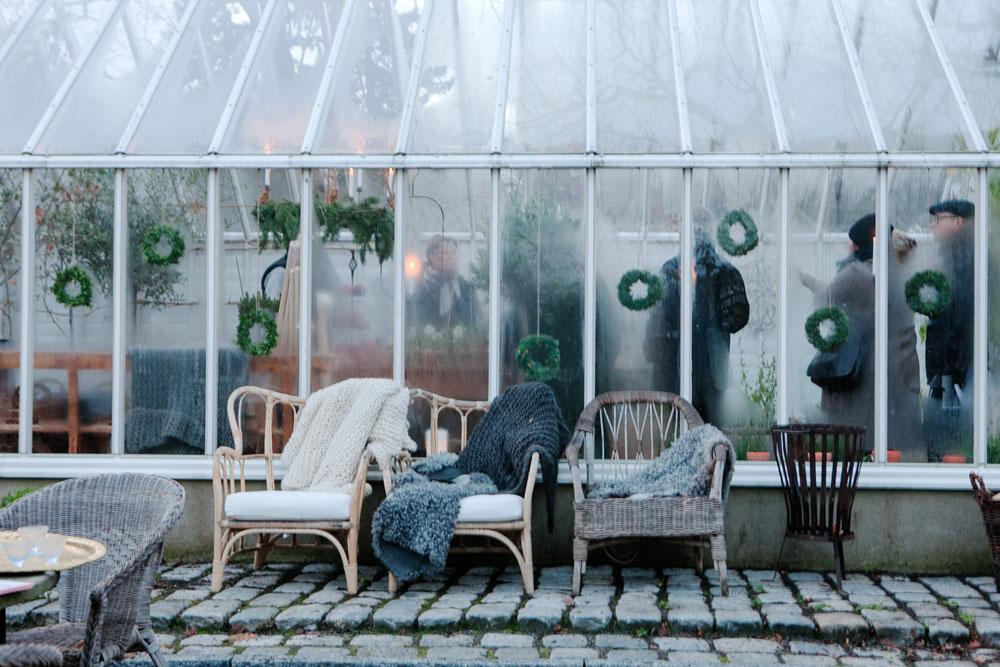 gröna kransar och imma skapar adventsstämning i växthuset.