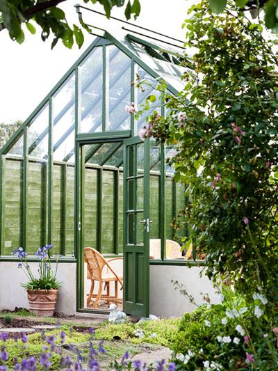 Grönt växthus med lavendel