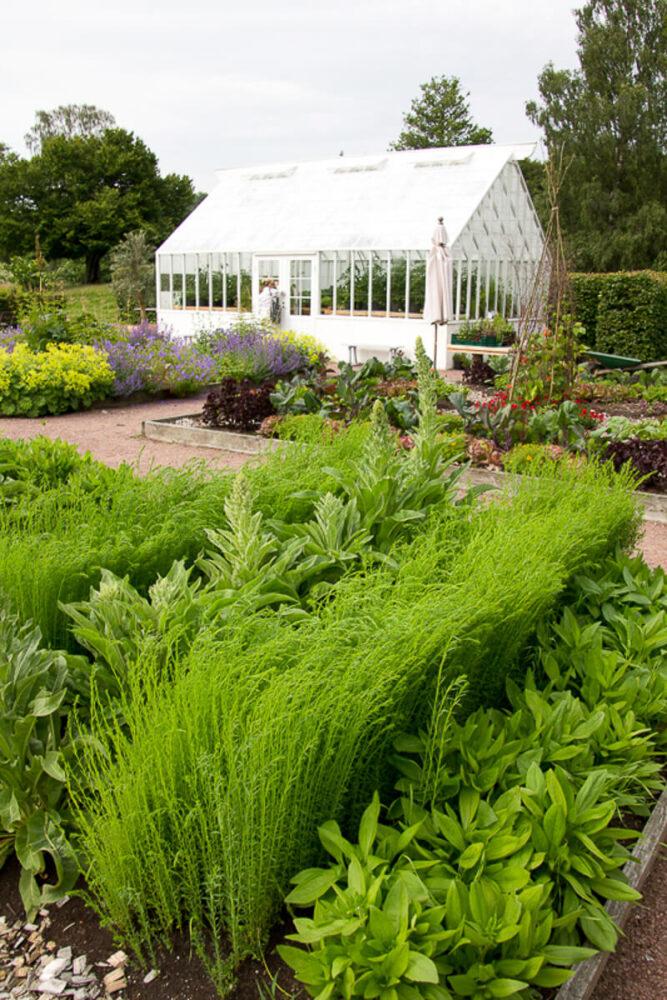 Ett vitt växthus i trädgården