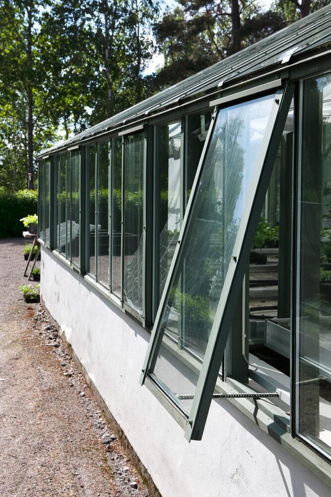 Ett vägg fönster på växthuset