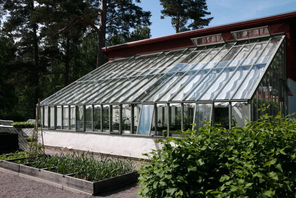 Ett grönt pulpettak växthus